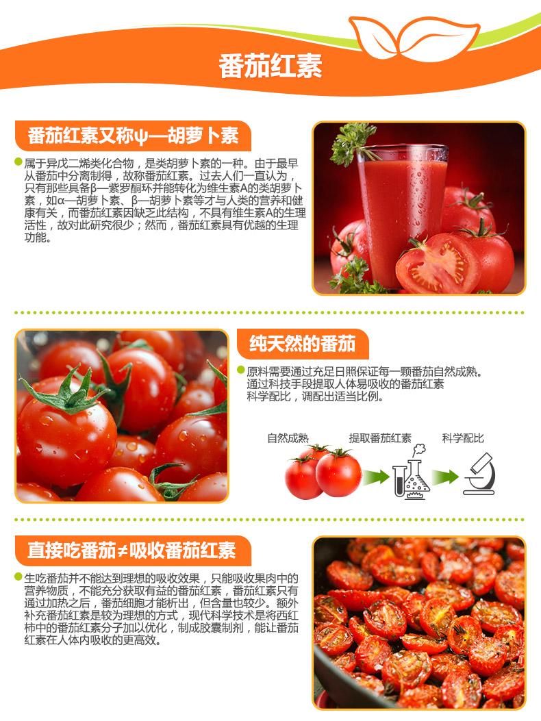 番茄红素_06.jpg