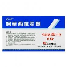 石药集团 阿莫西林胶囊 0.5g*20粒