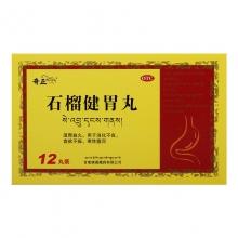 奇正 石榴健胃丸 12丸